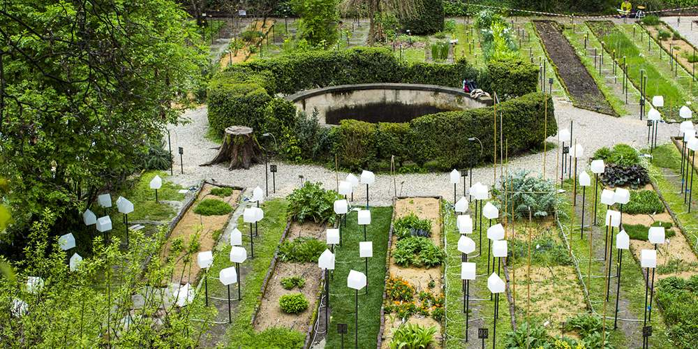 Ботанический сад в Милане