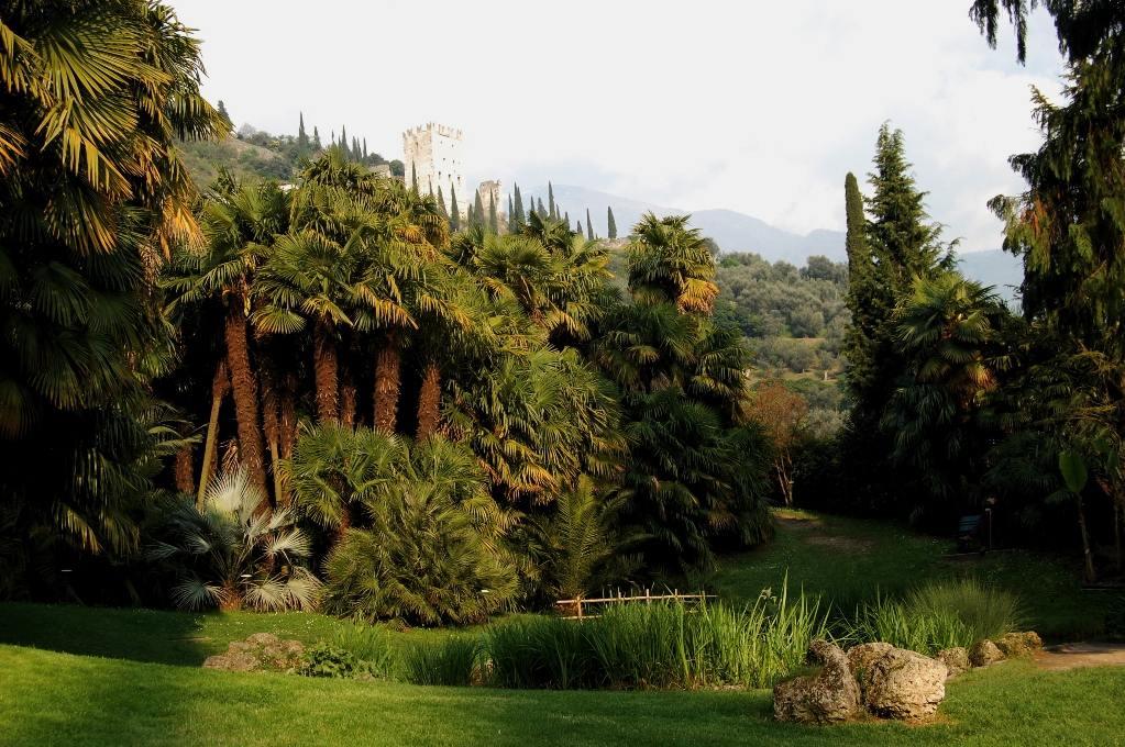 Ботанический сад Арборето Ди Арко