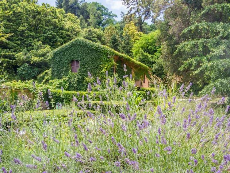 Ботанический сад Трастевере в Риме