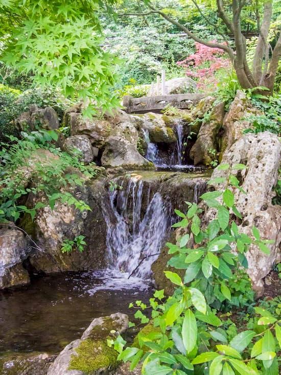 Ботанический сад Трастевере